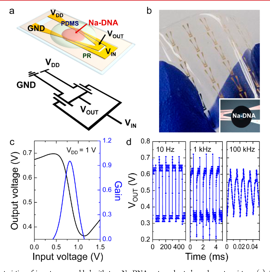 Figure 5 From Water Gel For Gating Graphene Transistors Semantic Transistor Inverter Circuit Electrical Characteristics Of Inverters Assembled With Two Na Dna