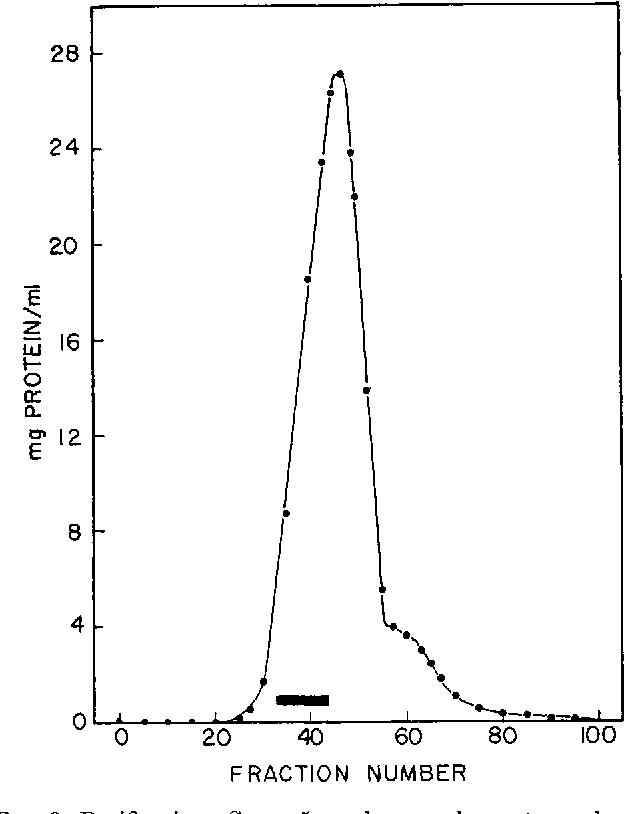 FIG. 2. Purification Step 5; column chromatography on Sephadex G-200. The dark bar indicates the fractions pooled. See the text for details.