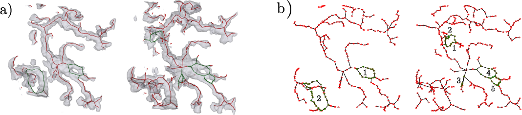 Figure 3 for Semi-supervised, Topology-Aware Segmentation of Tubular Structures from Live Imaging 3D Microscopy