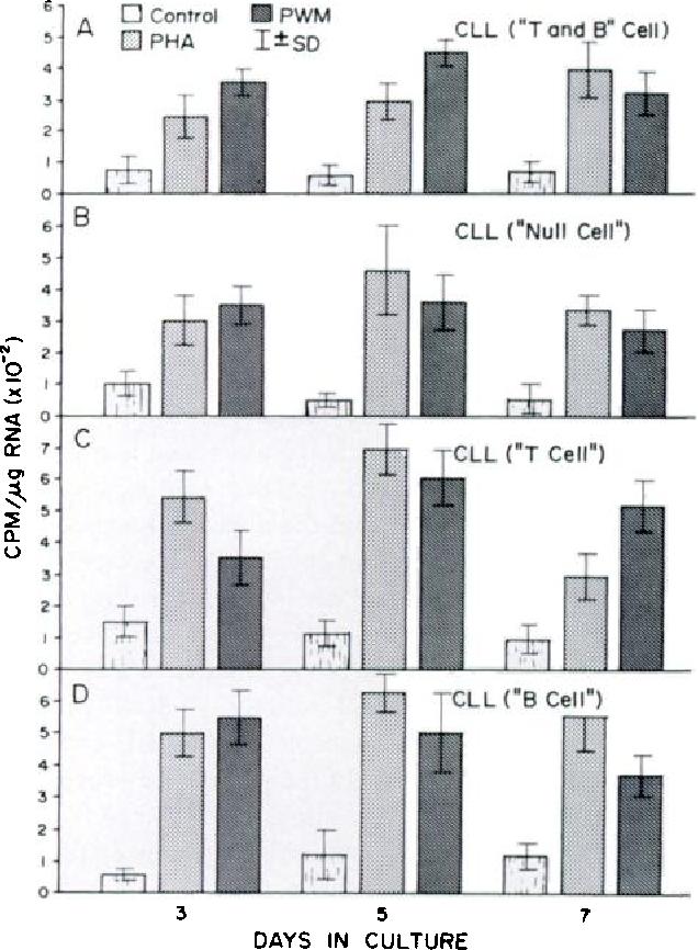 Mitogen stimulation of chronic lymphocytic leukemic lymphocytes
