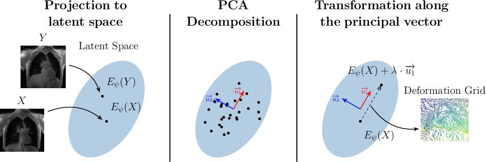 Figure 1 for Exploring Deep Registration Latent Spaces