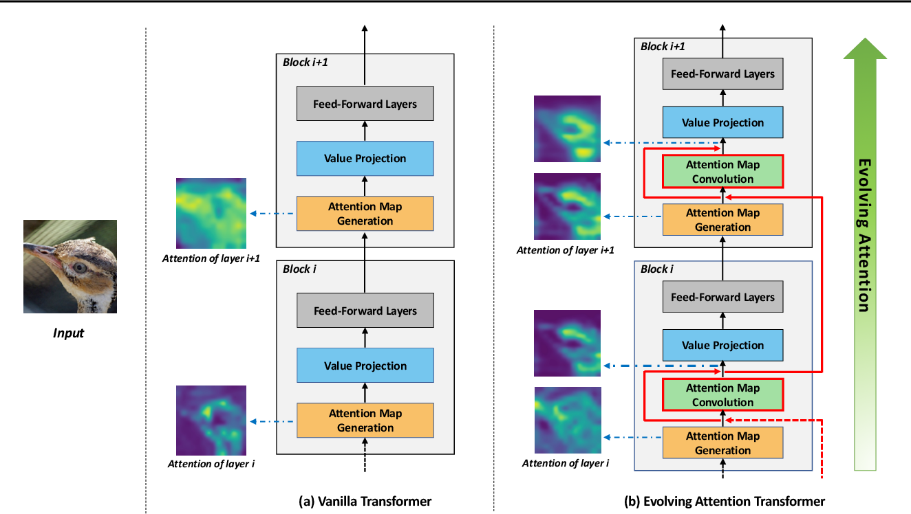 Figure 3 for Evolving Attention with Residual Convolutions
