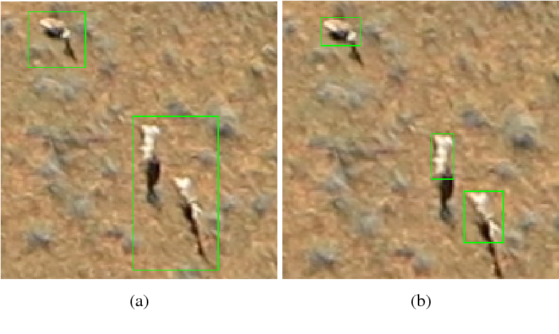 Figure 1 for Detecting Mammals in UAV Images: Best Practices to address a substantially Imbalanced Dataset with Deep Learning