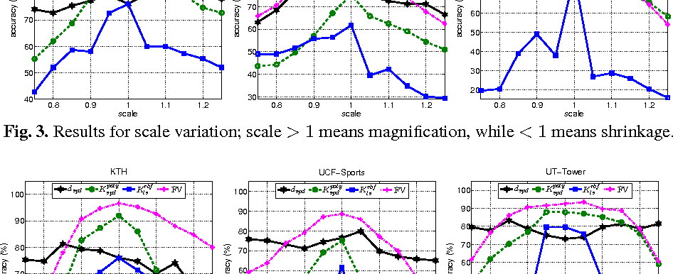 Figure 4 for Comparative Evaluation of Action Recognition Methods via Riemannian Manifolds, Fisher Vectors and GMMs: Ideal and Challenging Conditions