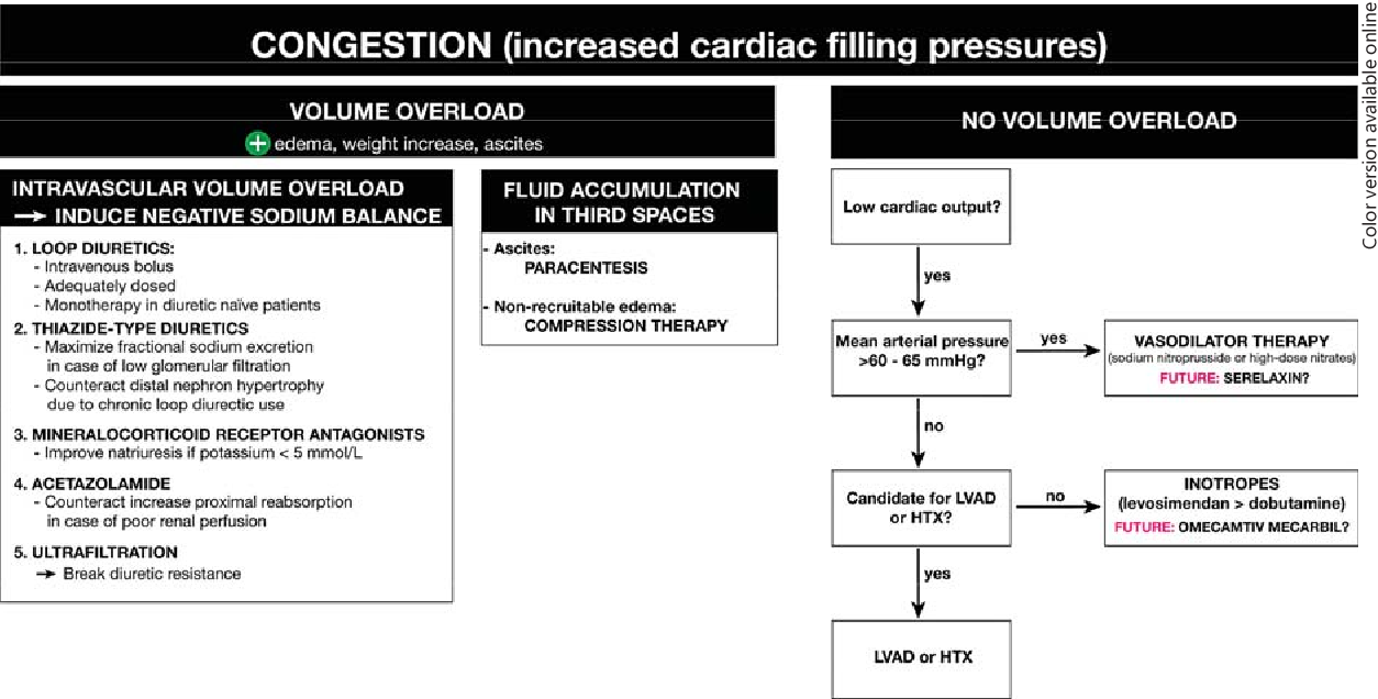 Fig. 2. Flowchart of the treatment of patients with CRS. HTX = Heart transplantation; LVAD = left ventricular assist device.