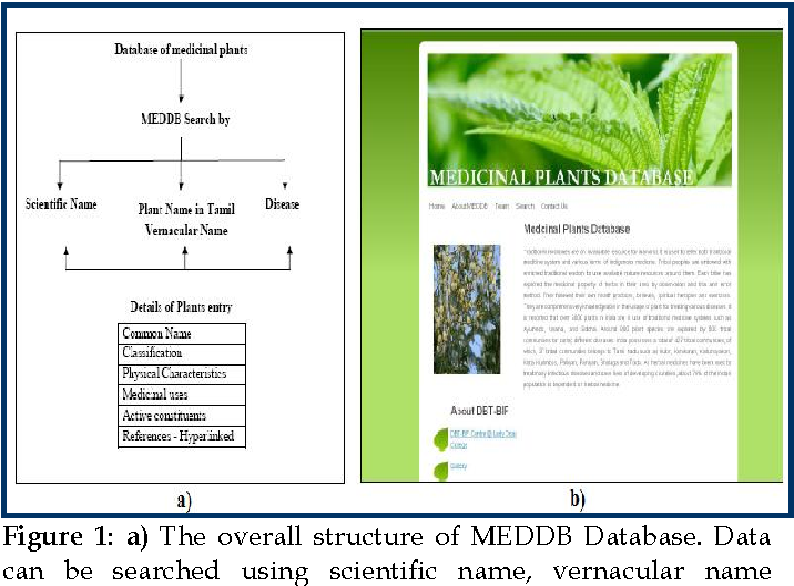 Figure 1 from MEDDB: A medicinal plant database developed with the