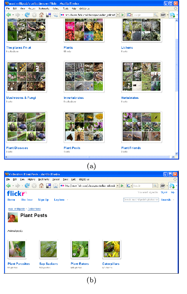 Figure 1 for Constructing Folksonomies from User-specified Relations on Flickr