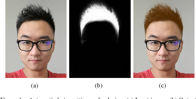 Figure 1 for Real-time deep hair matting on mobile devices