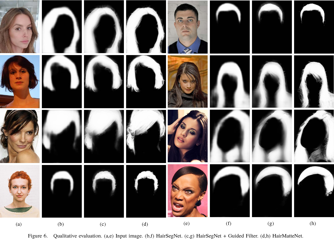 Figure 6 from Real-Time Deep Hair Matting on Mobile Devices