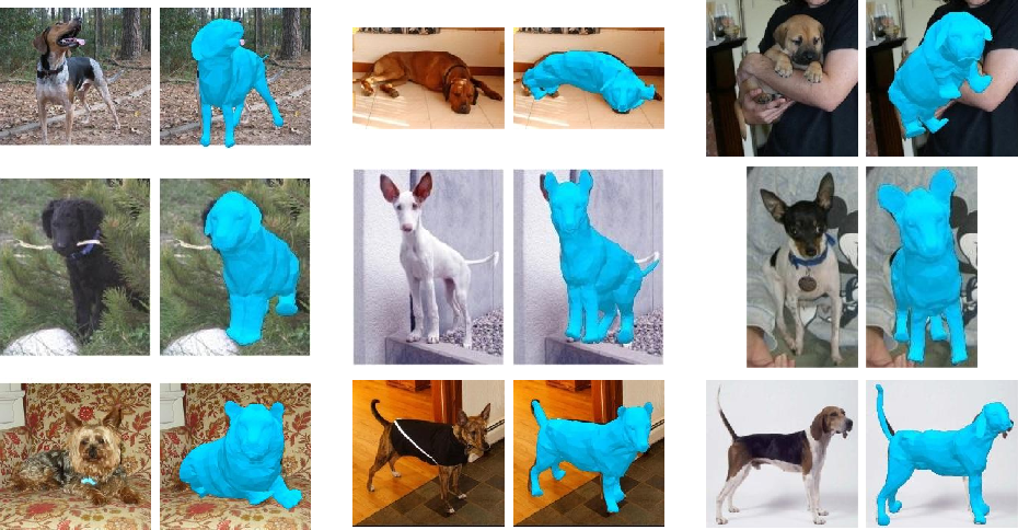 Figure 1 for Who Left the Dogs Out? 3D Animal Reconstruction with Expectation Maximization in the Loop