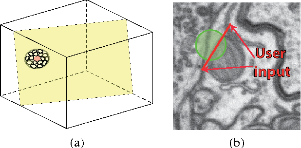 Figure 3 for Introducing Geometry in Active Learning for Image Segmentation