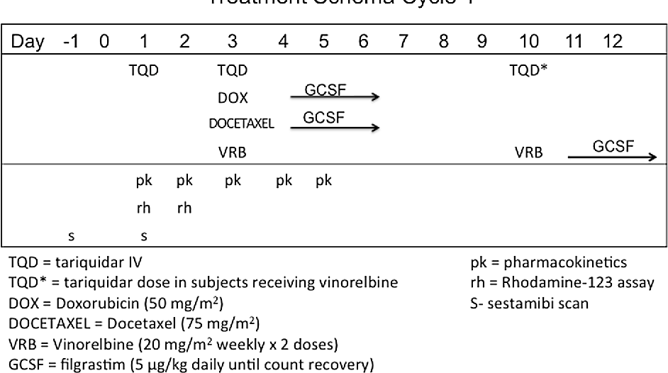 Fig. 1 Chemotherapy schema. Chemotherapy was doxorubicin 50 mg/m2/dose IV over 15 min once per cycle, docetaxel 75 mg/m2/dose IV over 60 min once per cycle, or vinorelbine 20 mg/m2/dose IV over 10 min weekly 2× doses per cycle