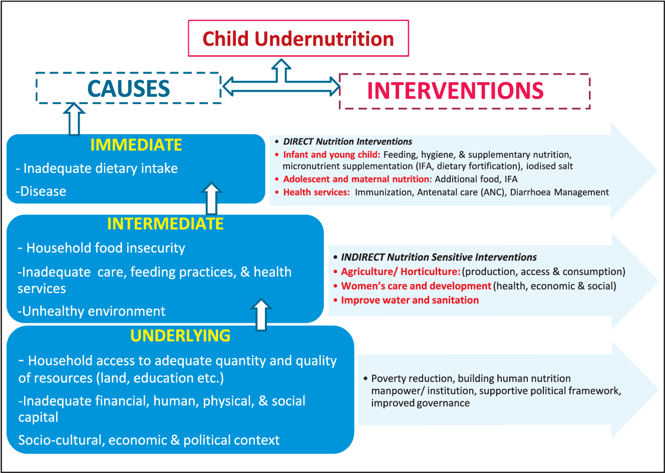 PDF] India ' s Malnutrition Problem : Emerging Evidence and Concerns