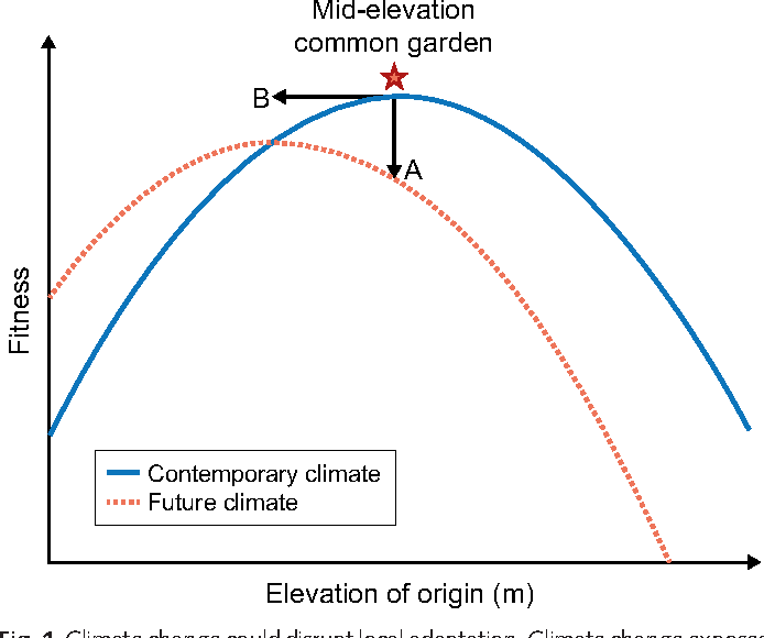 figure 1 from tansley insight plant fitness in a rapidly changing1 climate change could disrupt local adaptation climate change exposes natural populations to