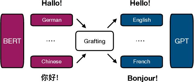Figure 1 for Multilingual Translation via Grafting Pre-trained Language Models