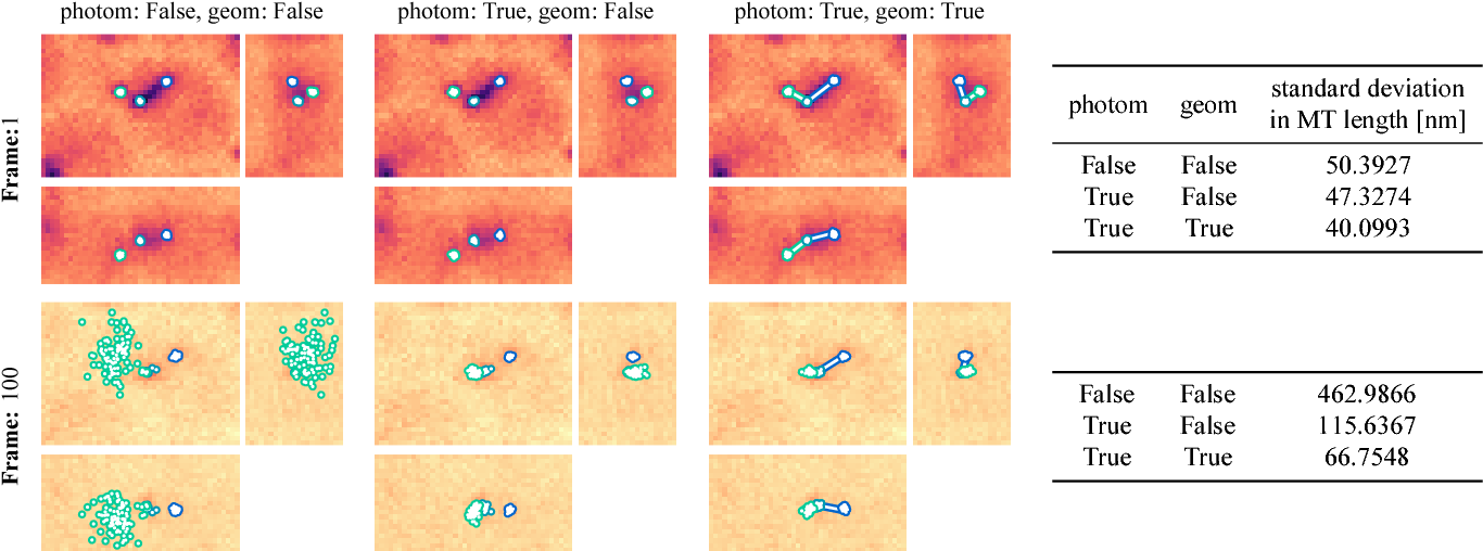 Fig. 4. Mean position dSPB, pSPB and pEnd estimated by 100 independent particle filters (using 100 particles) for a model without photo-bleaching/interaction prior and for two models with photo-bleaching (with and without geometric coupling).