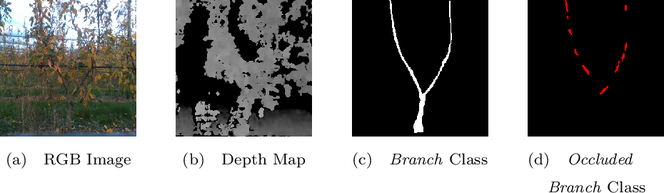 Figure 3 for Semantic Segmentation for Partially Occluded Apple Trees Based on Deep Learning