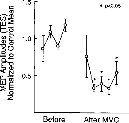Fig. 2 Mean (_+SE) group amplitudes (n=5) of transcranial electrical stimulation (TES)-induced MEPs recorded at l-rain intervals for 4 min before and 5 rain following MVC in five subjects show depression similar to that seen with TMS in Fig. 1 (P<0.05)