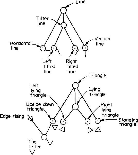 Fig. 3. The property structure of lines and triangles.