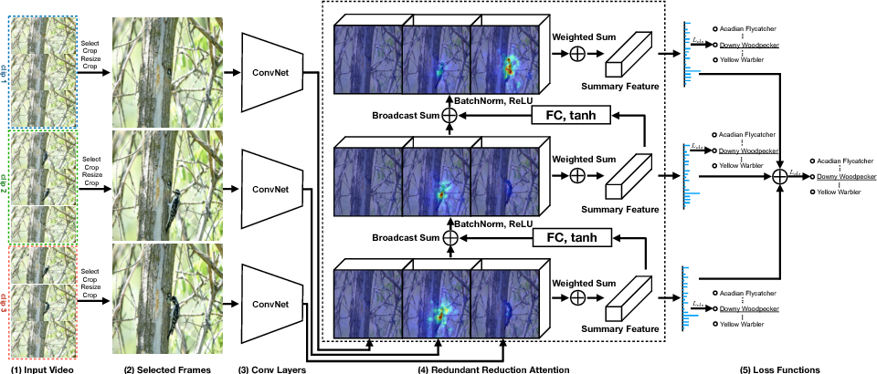 Figure 4 for Fine-grained Video Categorization with Redundancy Reduction Attention