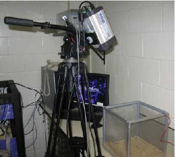 Fig. 6 Experimental setup. Camera and mesh cage