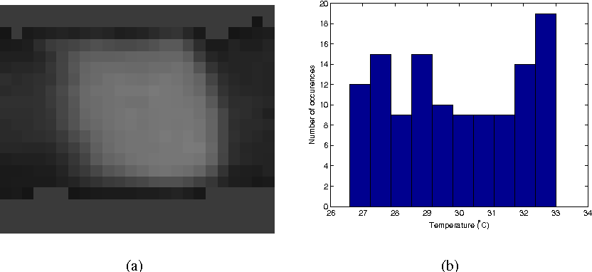 Fig. 1 Portion of a skin region. a) intensities, b) temperature histogram