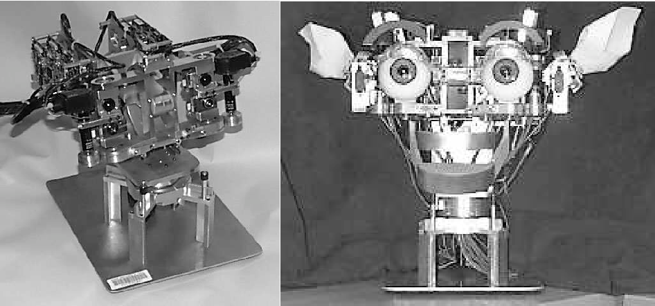 Figure 3 from The cog project: building a humanoid robot - Semantic