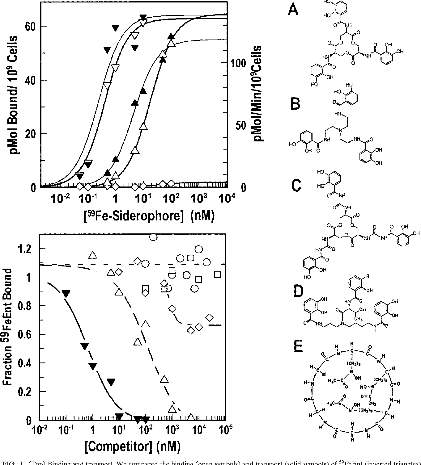 Figure 1 From Recognition Of Ferric Catecholates By Fepa Semantic