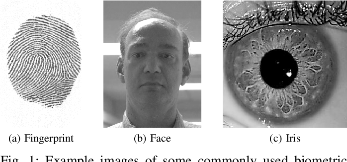Figure 1 for Signal-level Fusion for Indexing and Retrieval of Facial Biometric Data