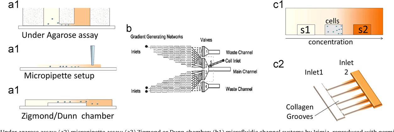Figure 4 From Microfluidics For In Vitro Biomimetic Shear