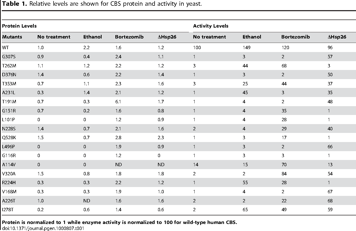 Table 1. Relative levels are shown for CBS protein and activity in yeast.