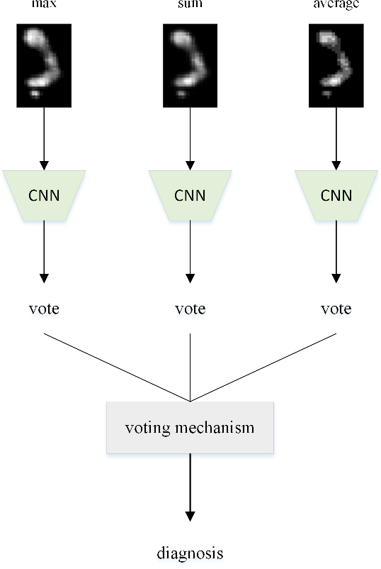 Figure 3 for A Model for Medical Diagnosis Based on Plantar Pressure