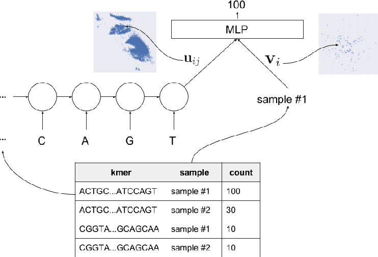 Figure 3 for Towards the Latent Transcriptome