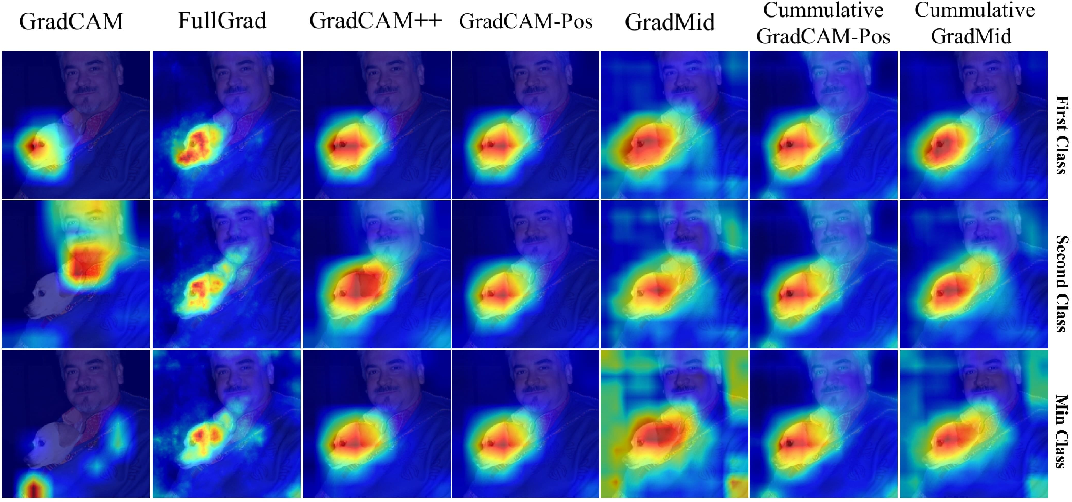 Figure 1 for Rethinking Positive Aggregation and Propagation of Gradients in Gradient-based Saliency Methods