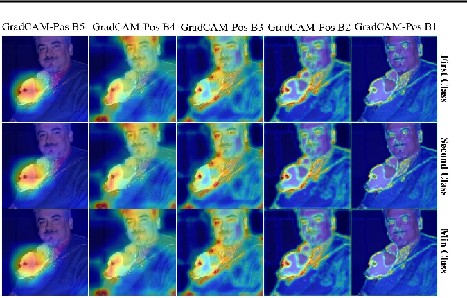 Figure 3 for Rethinking Positive Aggregation and Propagation of Gradients in Gradient-based Saliency Methods