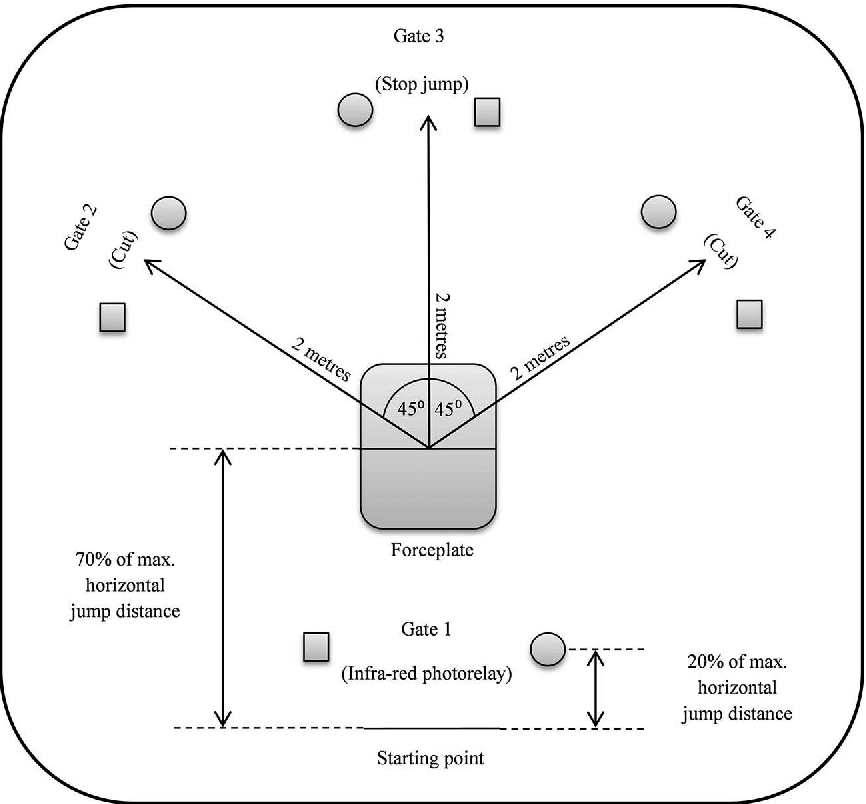 Figure 1 from The effect of high intensity exercise and