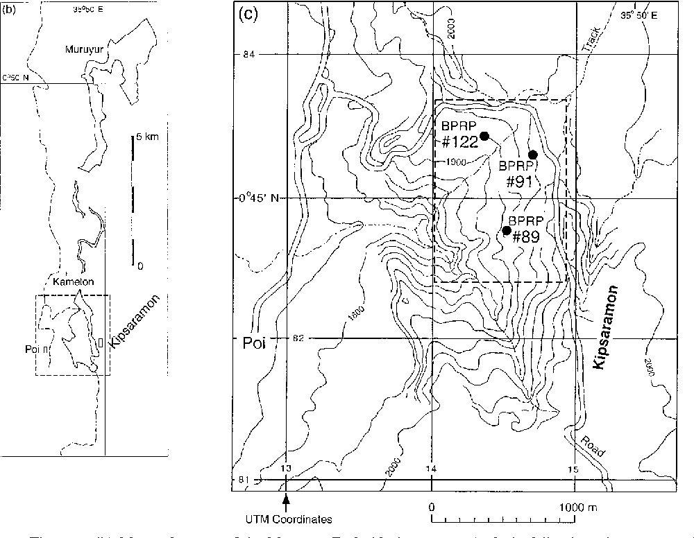 Geology And Geochronology Of The Middle Miocene Kipsaramon Site