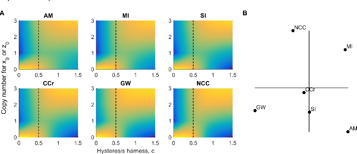 Fig 7 – Hysteresis in cell cycle networks. The response to varying input against opposing fixed bias was evaluated as in [3]. (A) The stationary distribution was computed by integrating the chemical master equation for 100 time units, fixing an