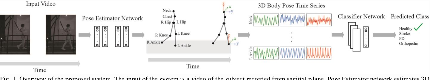 Figure 1 for Automatic Health Problem Detection from Gait Videos Using Deep Neural Networks