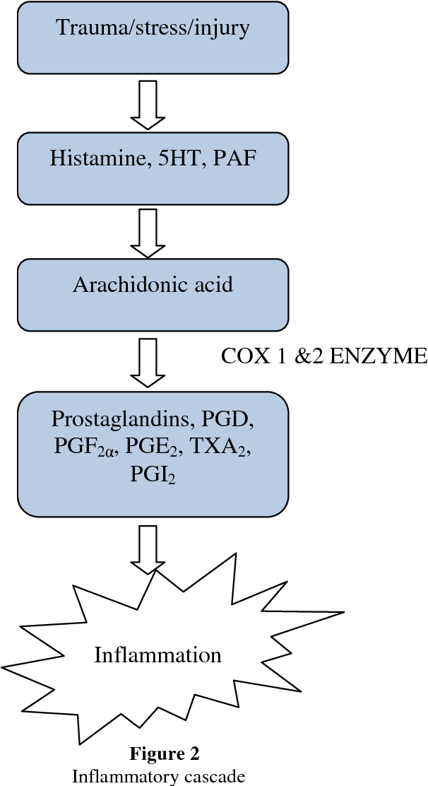 Figure 2 from Evaluation of anti inflammatory activity of