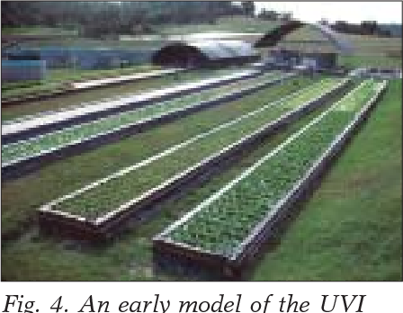 Figure 4 from Oklahoma Cooperative Extension Service