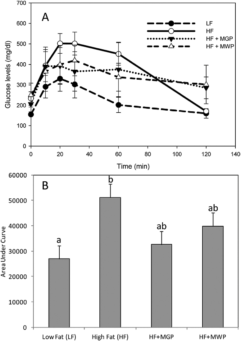 Figure 3. (A) Blood glucose levels in intraperitoneal glucose tolerance tests at week 12; (B) area under curve of blood glucose for 2 h after a glucose challenge (n = 5).
