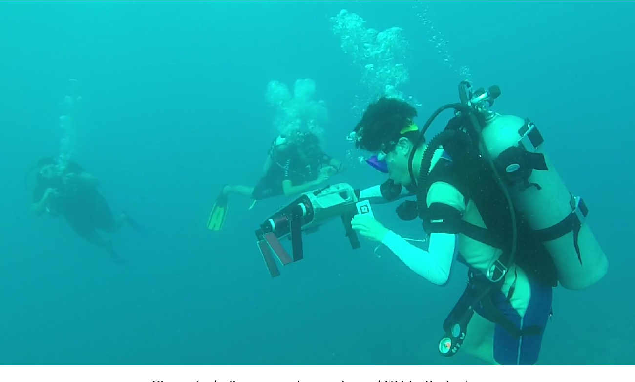 Figure 1 for An Analysis of Deep Object Detectors For Diver Detection