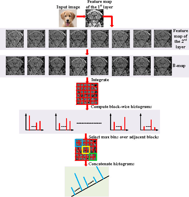 Figure 2 for CUNet: A Compact Unsupervised Network for Image Classification