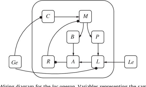 figure 7 from reduction of boolean network models semantic scholar rh semanticscholar org Heart Diagram Nodes Lymph Node Diagram