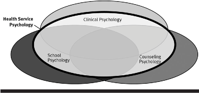 Professional psychology in health care services a blueprint for figure 1 malvernweather Gallery