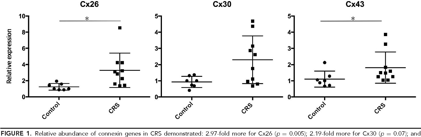 FIGURE 1. Relative abundance of connexin genes in CRS demonstrated: 2.97-fold more for Cx26 (p = 0.005); 2.19-fold more for Cx30 (p = 0.07); and 1.49-fold more for Cx43 (p = 0.04). CRS = chronic rhinosinusitis.