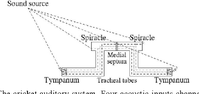 Ear Model Diagram - Wiring Diagrams Folder on
