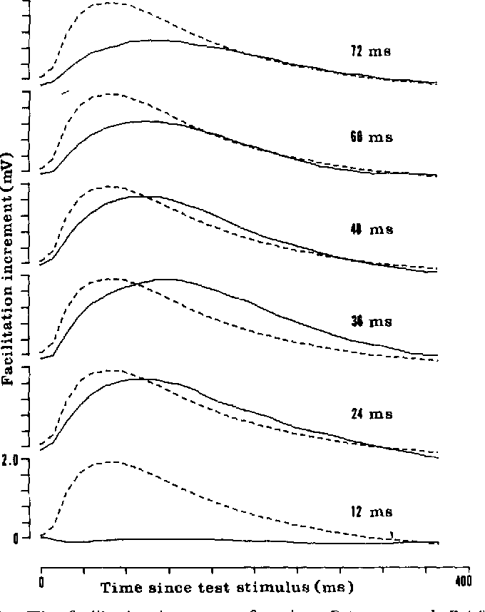 "FIGURE 4. The facilitation increment functions FI(J) through Fe(j). The values of each F~(j), for j = 1-32, are connected by a continuous line. For comparison, the unfacilitated, single-stimulus response is given by the dashed line in each graph ofF, . The graphs are all to the same scale. The interstimulus interval, 12""s ms, is given for each F,. The time, 12""j ms, after the test stimulus, is given by the horizontal axes. At a 12-ms interstimulus interval, the facilitation increment FI is essentially zero, but at 24 ms, the facilitation increment is large; maximum facilitation occurs at a 36-ms interstimulus interval. The half-widths of the F, shown here range from 30-60 ms larger than the 140-ms half-width of the singlestimulus response."