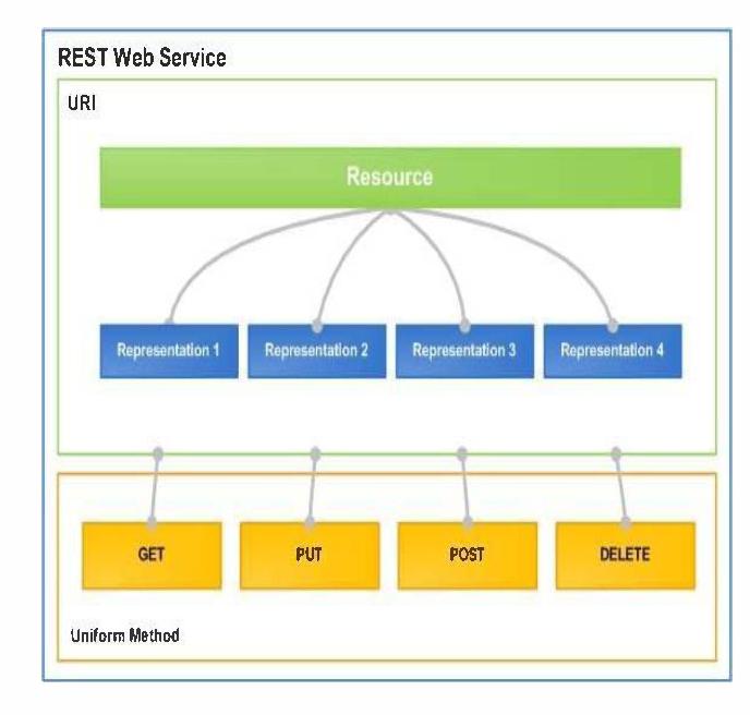 Development of a REST Web Service to help organizations